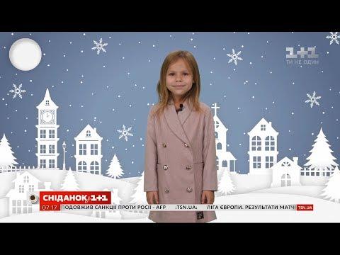 Сніданок з 1+1: Погода від Фросі на 14-15 грудня в Україні