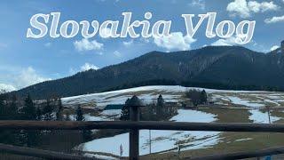 슬로바키아VLOG | 네스프레소 에센자 미니 언박싱 ,…
