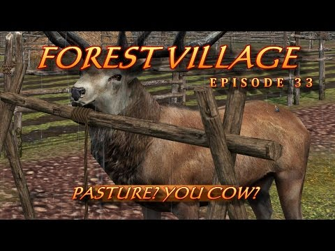 Forest Village 33  PASTURE?  YOU COW?