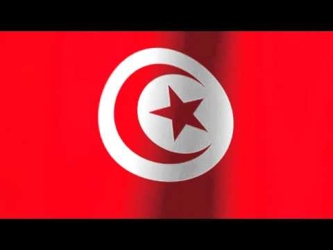 Flag of Tunisia - تونس‎ علم