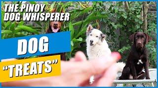 Dog treats: what do I use?
