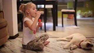 Наш новый член семьи, любимый друг и товарищ - наша собака Шатти