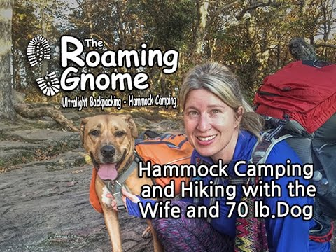 Hammock Camping and Hiking with the Wife and a 70 lb. Dog
