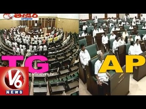 MLAS confused oath in T-Assembly - Teenmaar News
