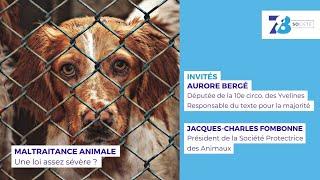 7/8 Société. La loi contre la maltraitance animale est-elle assez sévère ?
