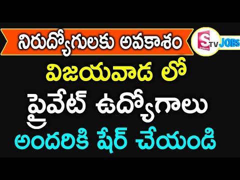 Latest Private Jobs In Vijayawada | Job Vacancies In Andhra Pradesh | Hyderabad Jobs | SumanTV Jobs