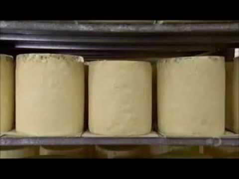 Blue Cheese (Blue Stilton Cheese)