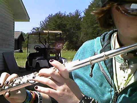 Colour my World By Chicago - Flute Solo