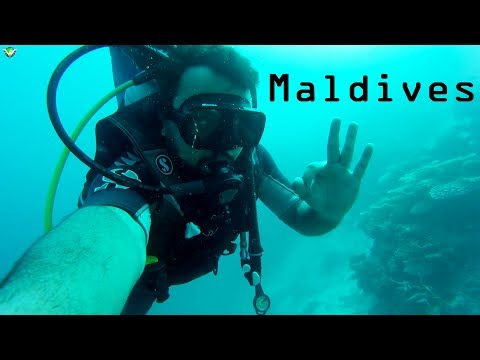 scuba-diving-in-maldives-|-my-complete-experience-|-things-to-know--cost,-training,-dangers-etc