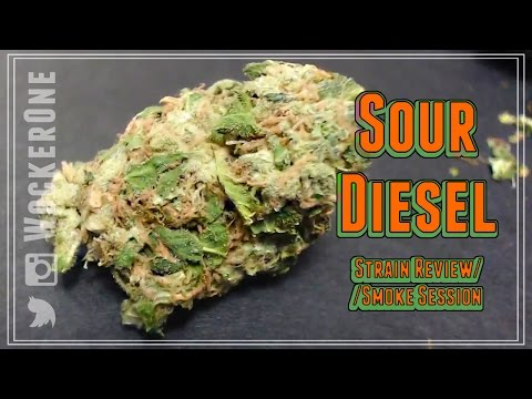 The Sour Diesel || Strain Review & Smoke Session