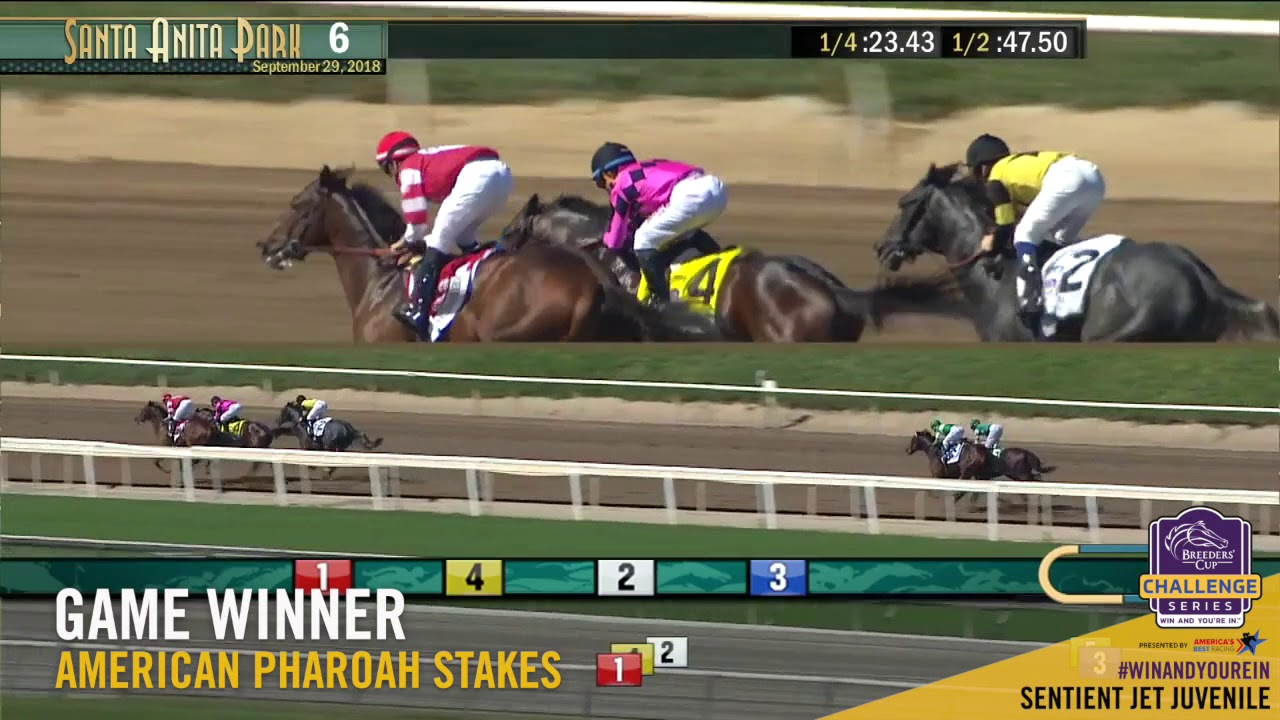 2018 American Pharoah Stakes Game Winner Youtube