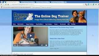 Doggy Dan Review