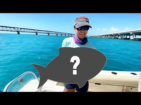 RARE Bridge Catch At Bahia Honda State Park 🐟 | Gale Force Twins