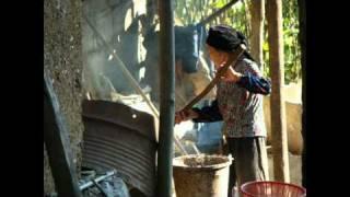 Beautiful North Vietnam
