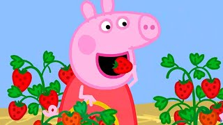 Peppa Pig Full Episodes | Season 7 Compilation 37 | Kids TV