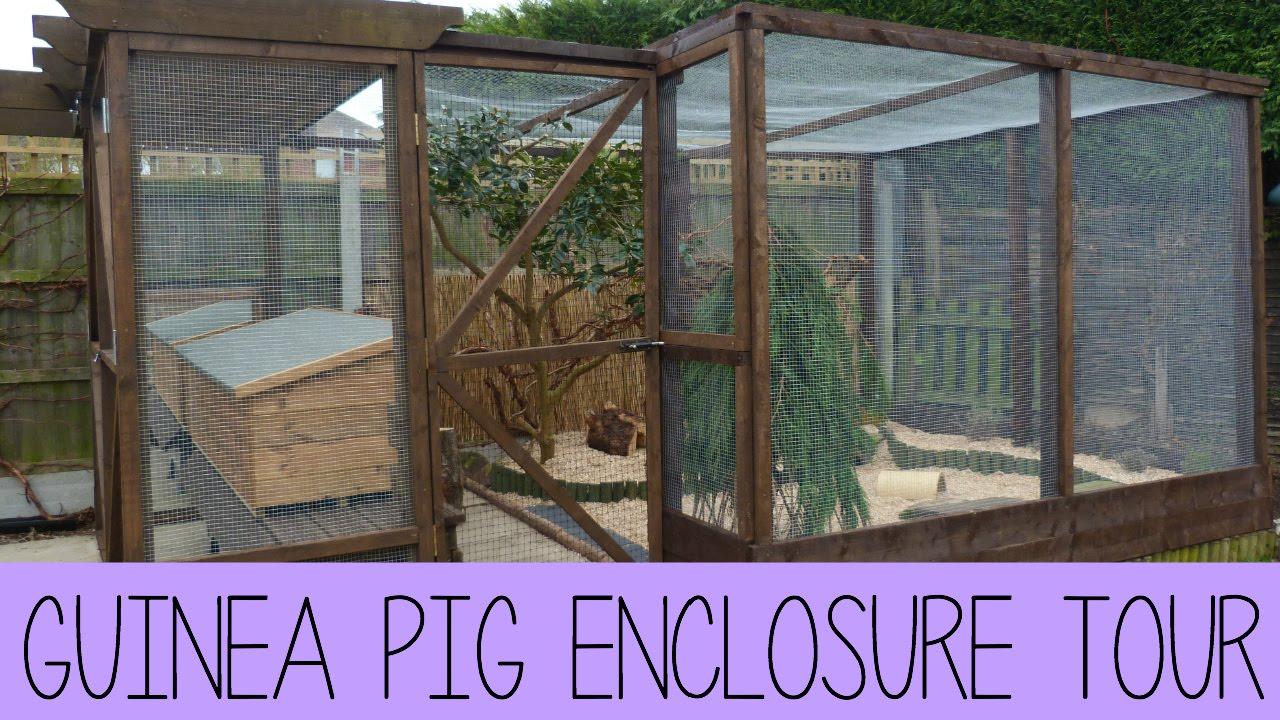 Guinea pig enclosure tour february 2015 youtube for Outdoor guinea pig cage