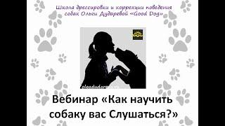 Вебинар: О чём молчат кинологи: как научить собаку Вас слушаться?