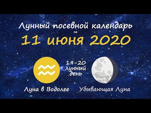 [11 июня 2020] Лунный посевной календарь огородника-садовода