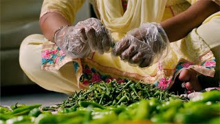 An Indian women cutting and leaning the green chilies for pickle / achar preparation