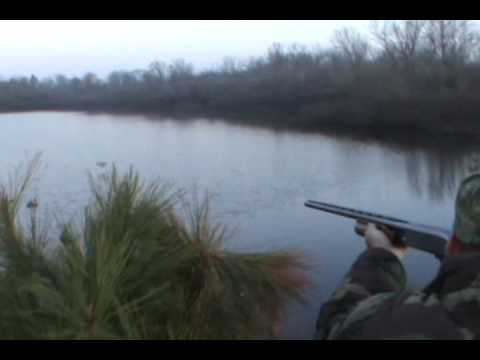 number 5 duck hunting,Central Louisiana