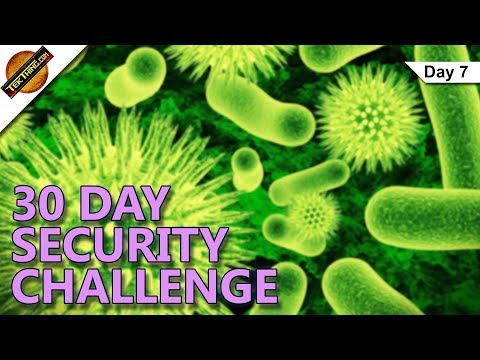 Using AntiVirus and AntiMalware Apps - Day 7 - 30 Day Security Challenge - TekThing