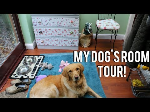 Tinka-Belle's Dog Room Tour! + Tricks, Toys & Treats!| Claudia Greiner