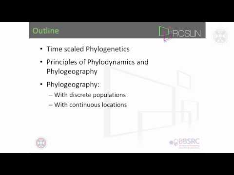 1. Phylogenetics & Phylogeography(lecture-part 1)