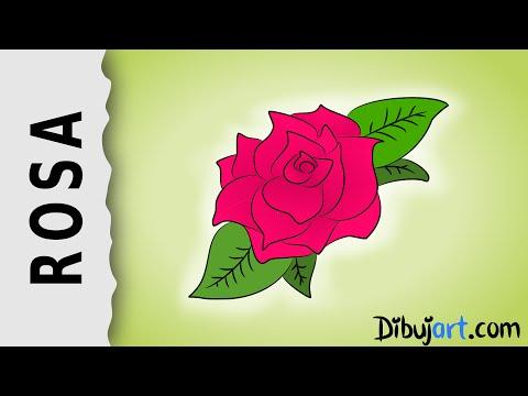 cómo-dibujar-una-rosa-#2---serie-de-dibujos-de-rosas