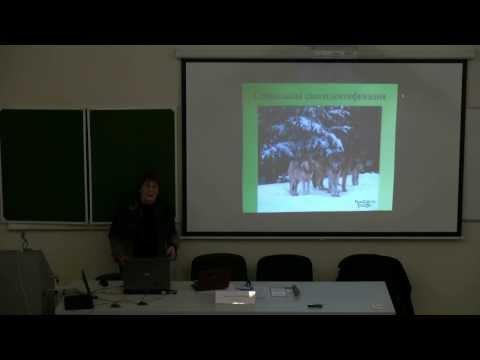 Екатерина Виноградова, Биологическое vs социальное в поведении человека