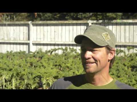 Advice on Starting Your Own Calgary Vegetable Garden