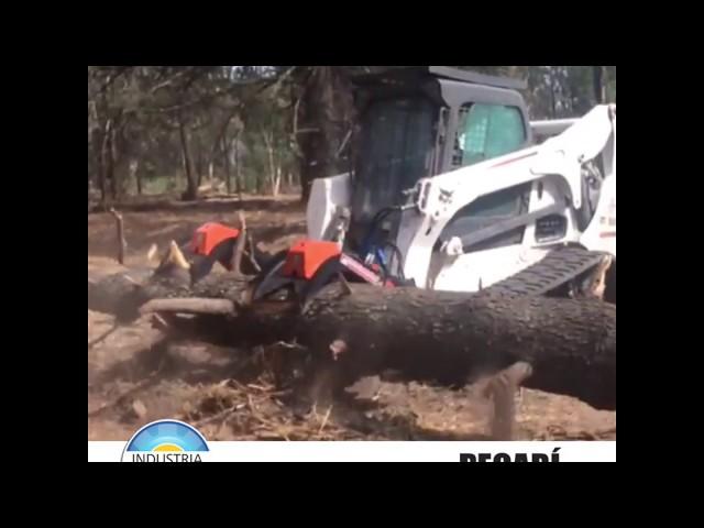 Garra Forestal - Noviembre 2019
