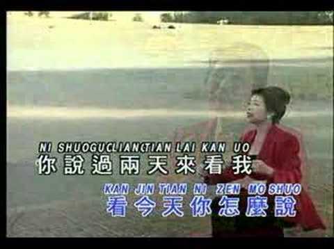 Ni zen mo shuo ( Lin su cien )KTV