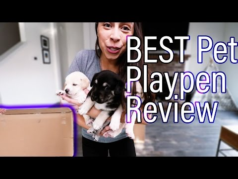 BEST Pet Playpen Product Review | Iris Dog Pen
