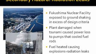 2011 Tohoku Japan Earthquake and Tsunami APWA