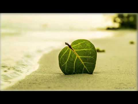 4 Hour STUDY MUSIC ๏̯͡๏ Music for Concentration, Homework, Essay Writing ๏̯͡๏ Music to Focus