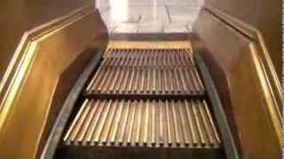 Wooden Escalator's at Macy's