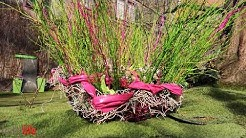 Vogelhochzeit - Frühlingsausstellung 2020