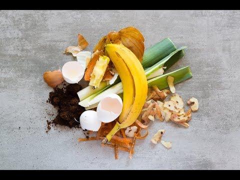 Con Que Alimentar A La Lombriz Roja Californiana Con Que Material Vermicompostaje Urbonera Youtube