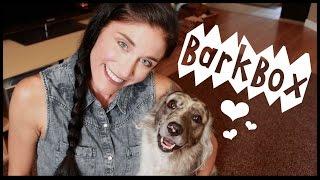 ★BarkBox★ Open Box Ruff-view #3 w/ Guest Star BRISBANE! Thumbnail