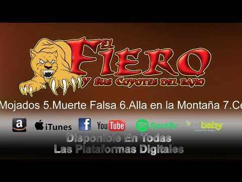 Cuando Quieras Verme- A.C.E. Records Presenta Ft El Fiero Y Sus Coyotes Del Bajio