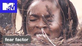 'Tiny Lizards, Massive Problem' Official Sneak Peek | Fear Factor Hosted by Ludacris | MTV