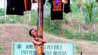 Download Video Lomba Panjat Pinang Tercepat, hanya dengan dua orang peserta MP3 3GP MP4