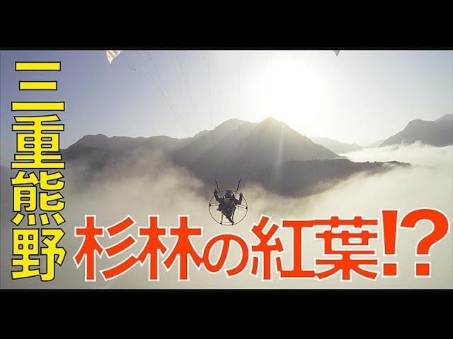 【三重・熊野】バッリバリの植林地帯に紅葉!?_185