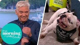 Excited Dog Distracts Holly & Phillip During Interview | This Morning