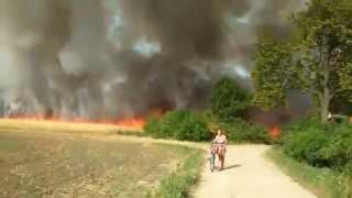 Pożar zboża w Ruchnie 2015-08-09