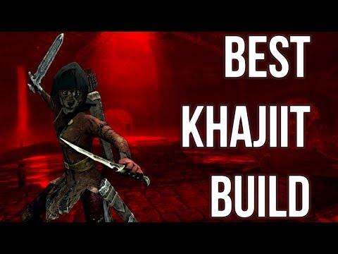 The Thief - Best Khajiit Build - Skyrim Builds