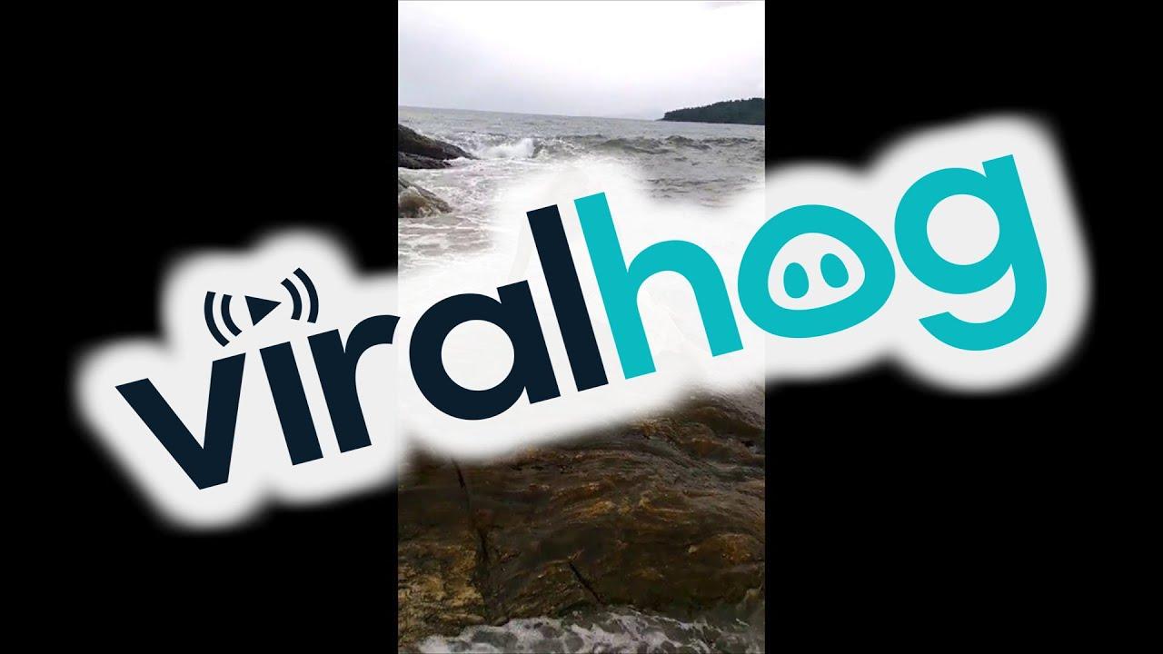 The Awkward Mermaid