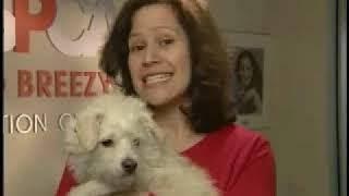 ASPCA Adoption Center Tour