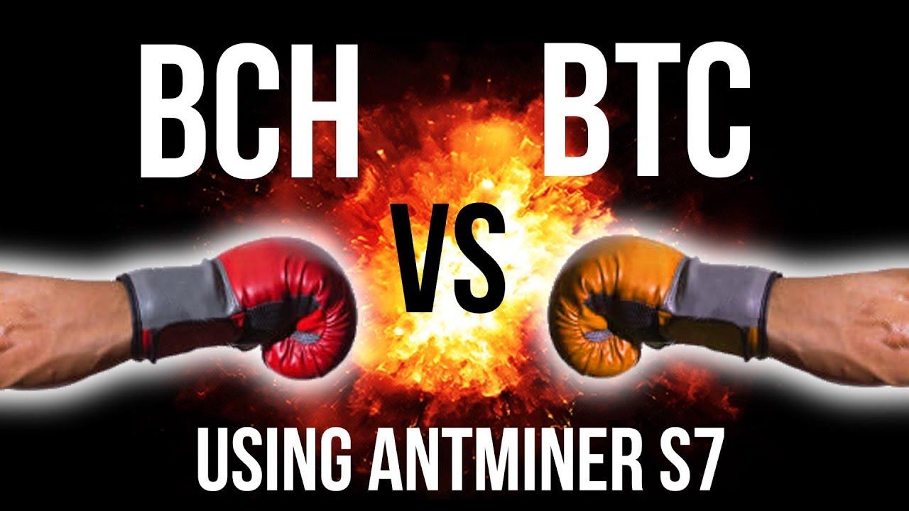 Bitcoin btc vs bitcoin cash bch mining 24 hour comparison using bitcoin btc vs bitcoin cash bch mining 24 hour comparison using antminer s7 ccuart Images