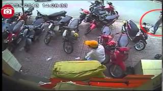 thief in Viet Nam